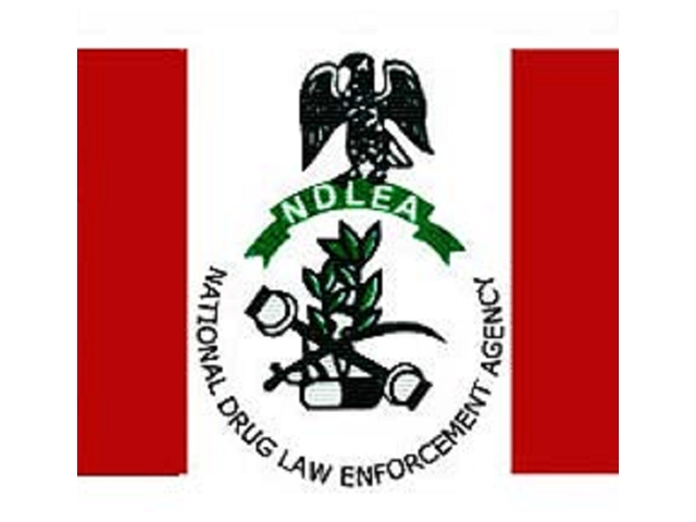 NDLEA arrests fugitive, others with cocaine