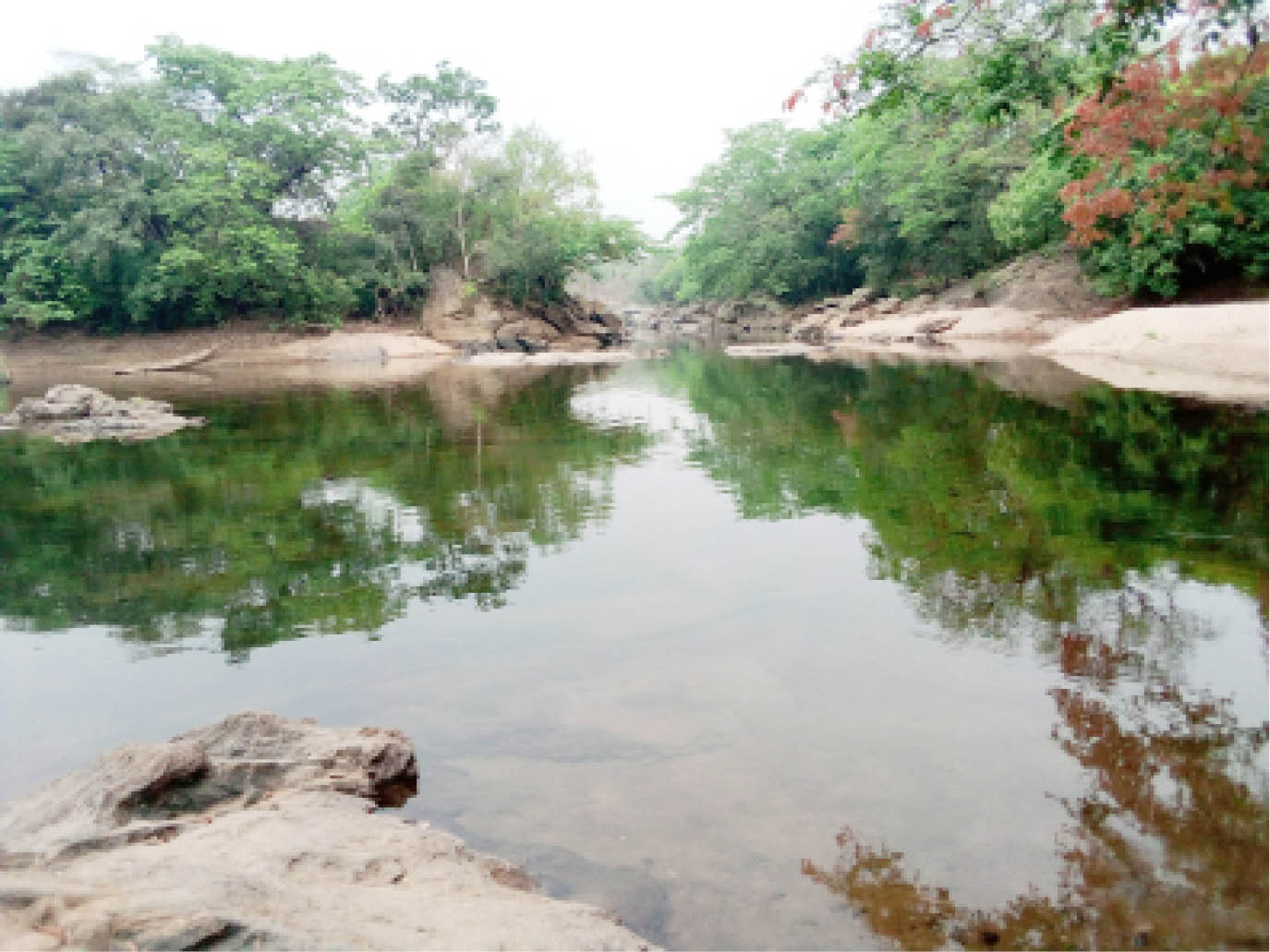 River Kam which housed the hippos pond inside the park
