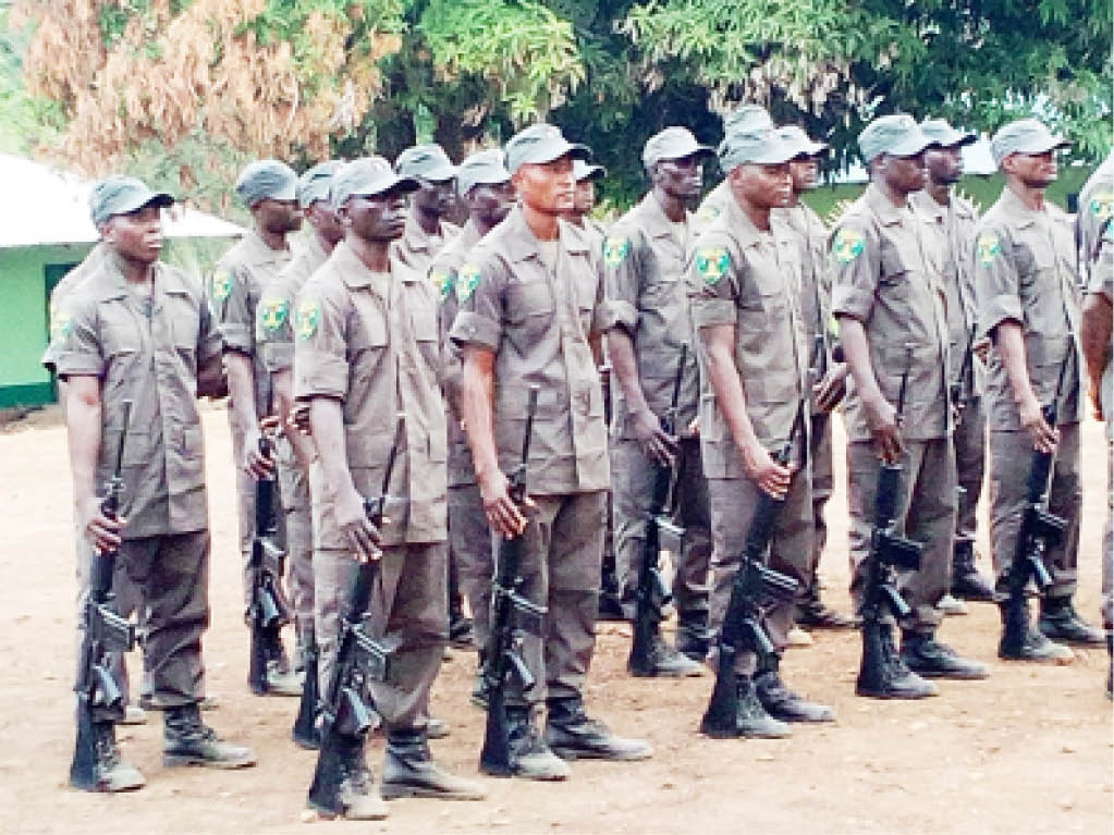 43 Rangers trained and equiped by Africa Nature investment ( ANI) during their passing out parade at Gashaka camp