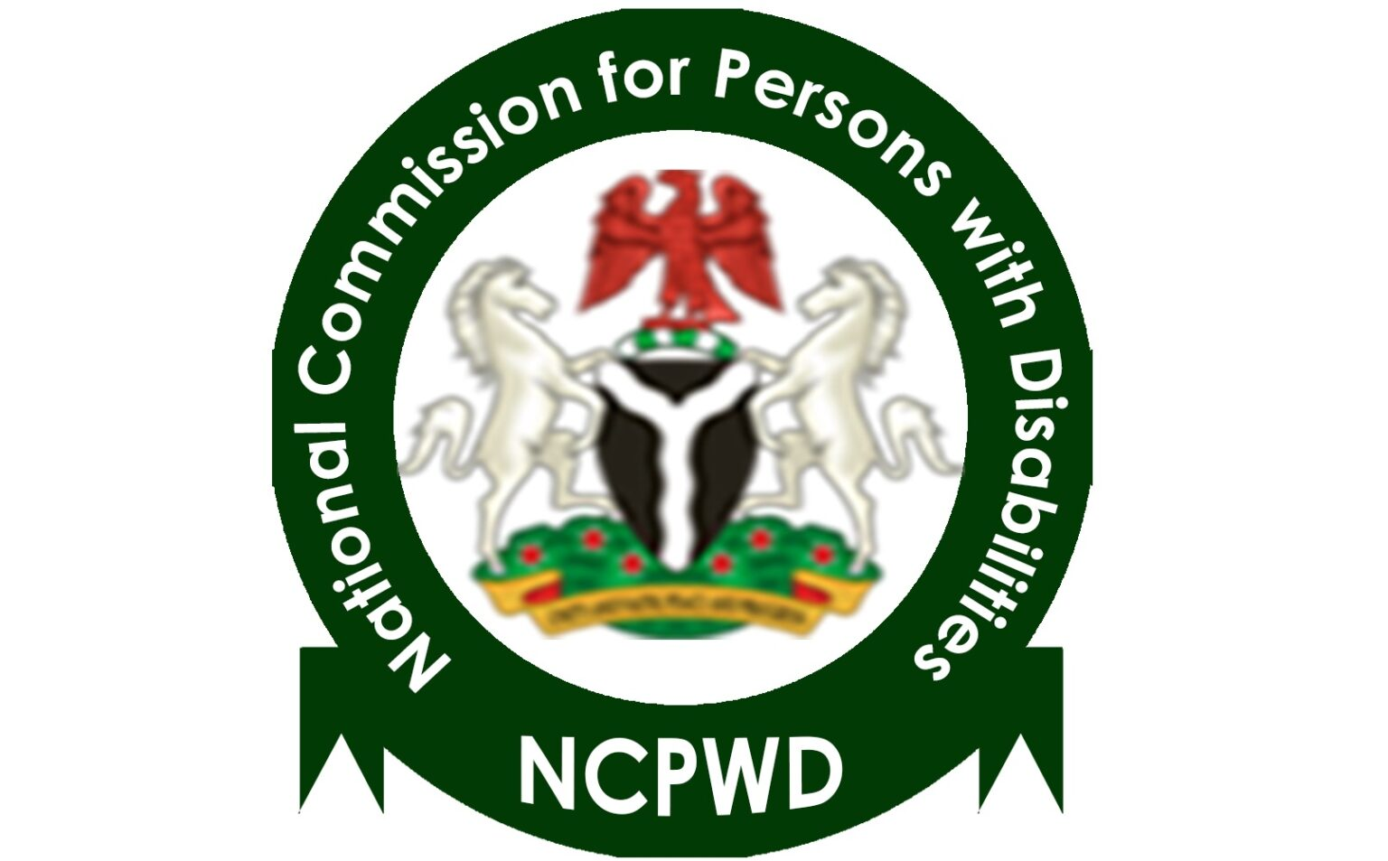 Good news for persons with disabilities | Dailytrust