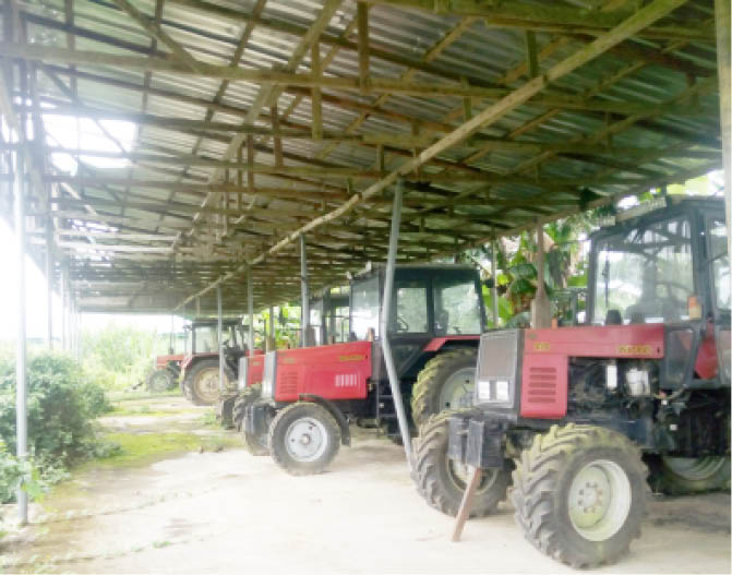Weeds overgrown the tractors that will be used for farm work during the planting of cassava that will serve as raw materials in the factory